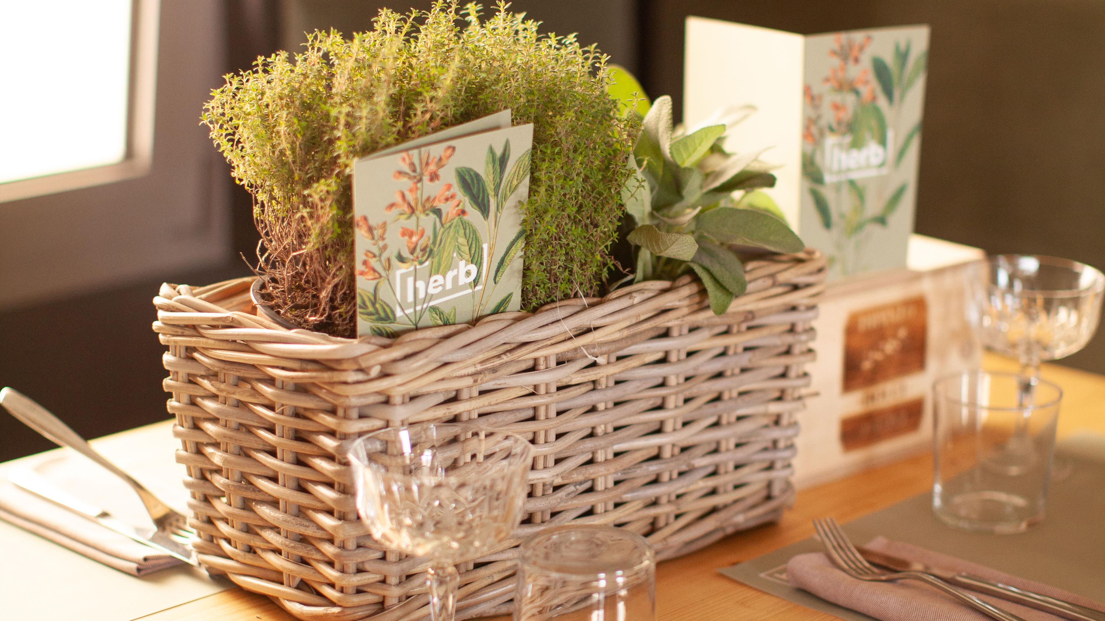 erbe aromatiche salvia timo sala tavolo