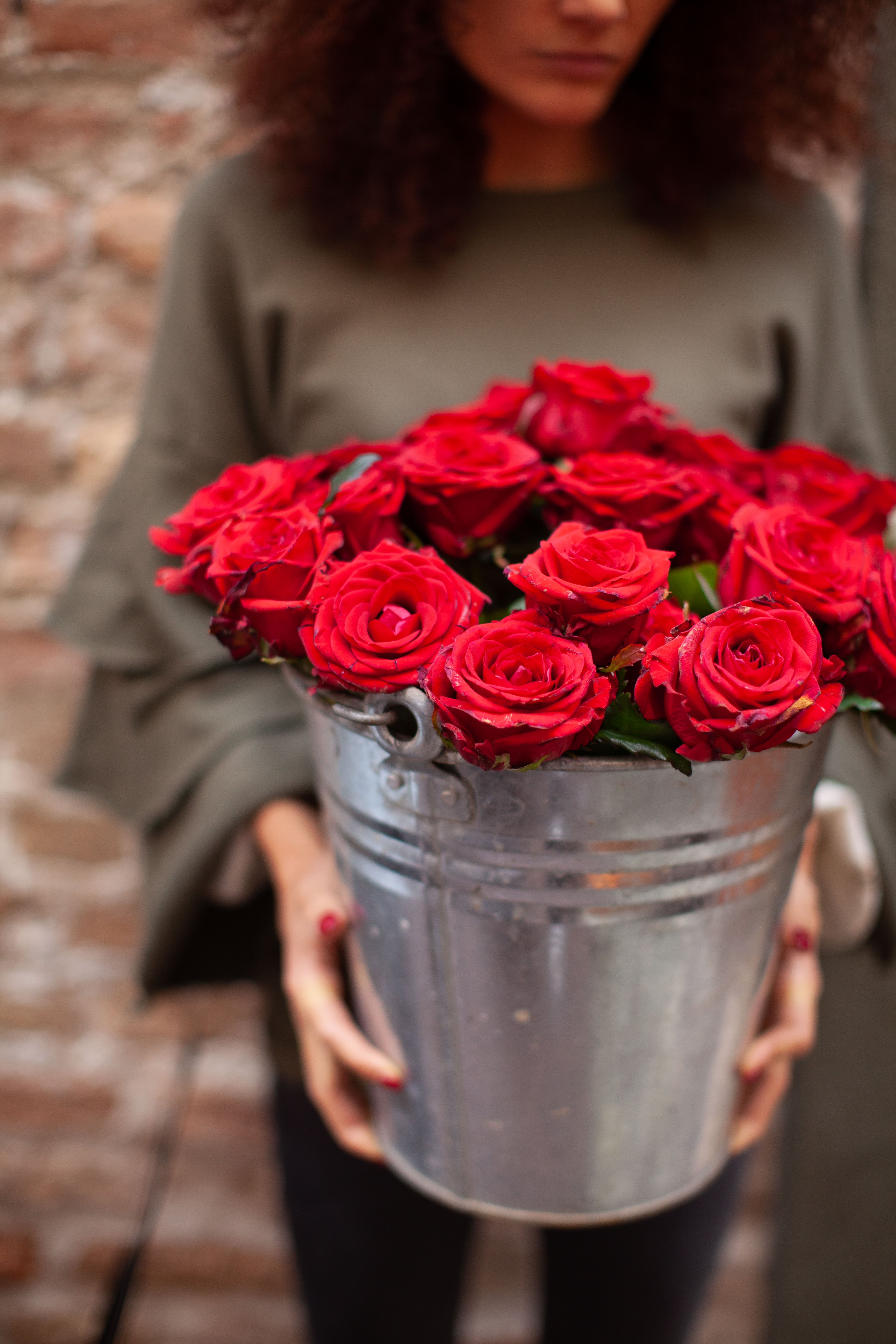 fiori rose rosse
