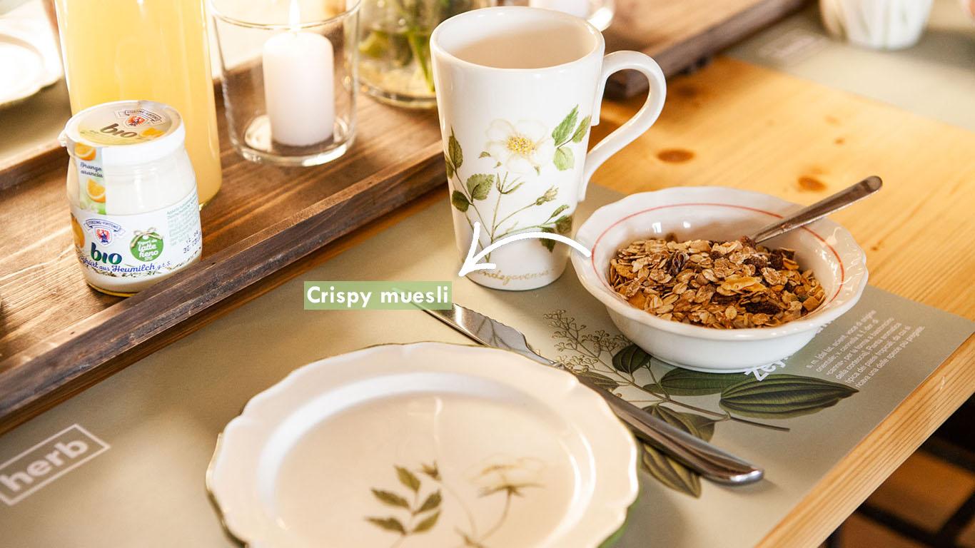 brunch muesli yogurt bio starter